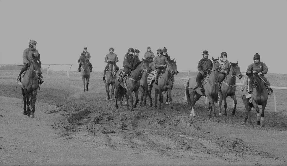 At The Top Of The 7f Gallop