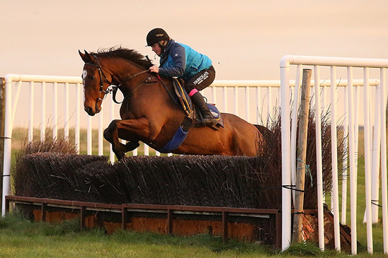Becky jumping a chase fence