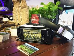 Virtual Reality - Wine Tasting