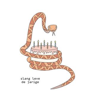 slang leve de jarige