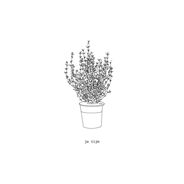 plantjes-09-12-12.png