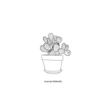 IG_sassy-plants_Insta_1080x10802.png