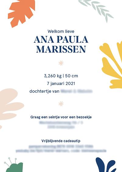 geboortekaartje_AnaPaula_A6-staand_v22.p