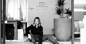 Aqua Gild website