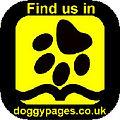 Walky Walkies Dog Walker Dog Walking Loughton Dog walking dog walk walker walkers local pet sitting visiting care of animals