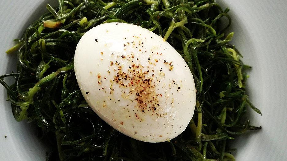 gourmet egg