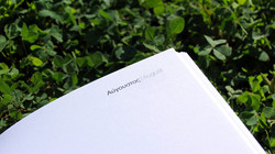 Asprimera_Diary2011