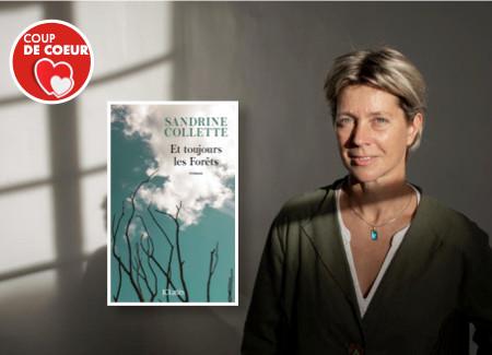 Et toujours les forêts - de Sandrine Collette