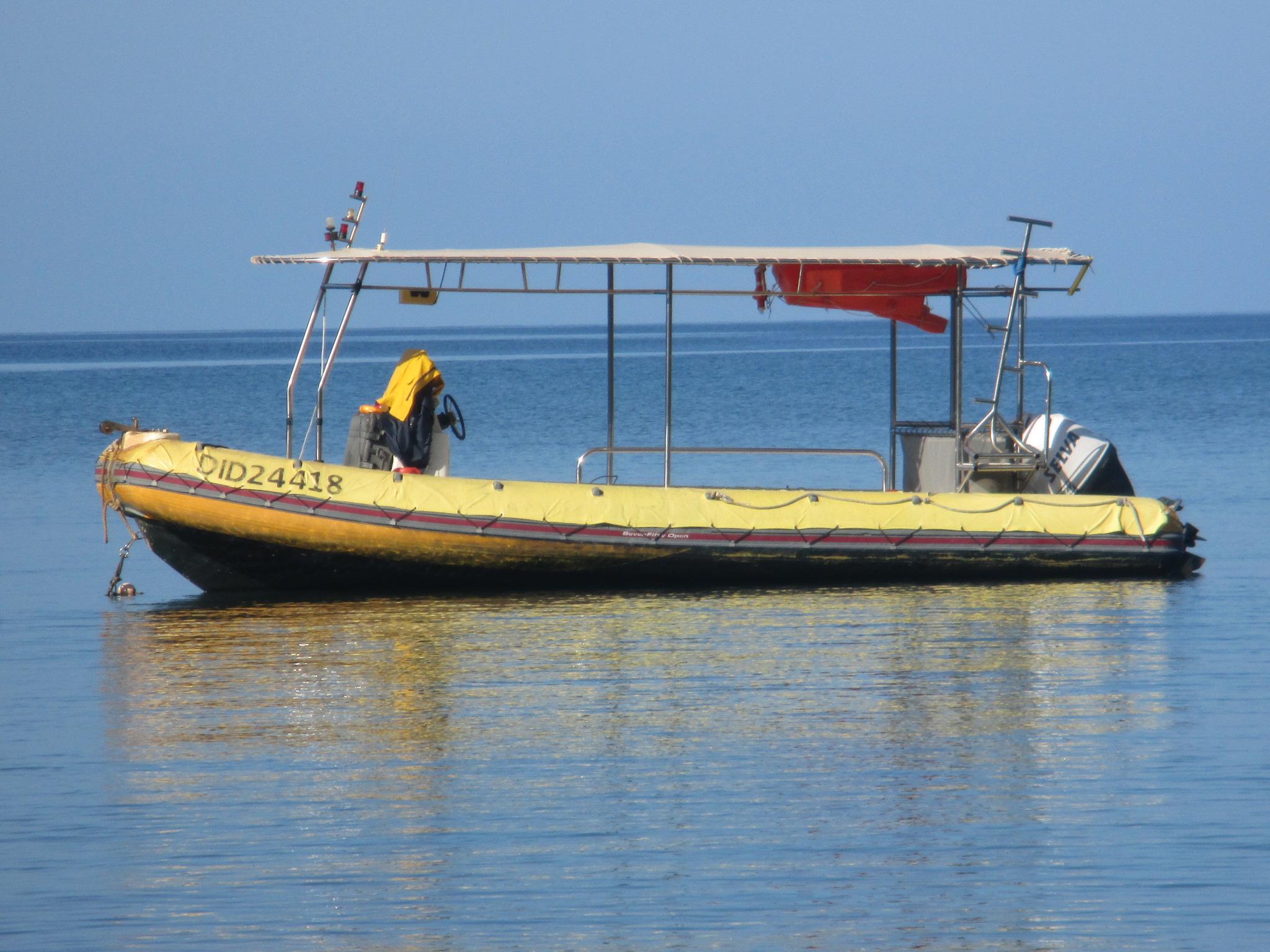 Abalone Plongee Mayotte