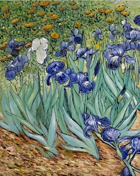 Van Gogh - Schwertlilien