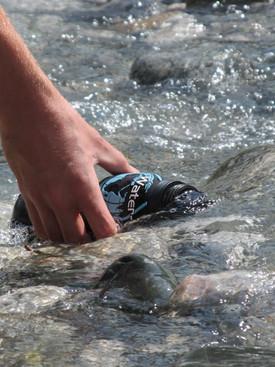 Bottle in the stream.JPG
