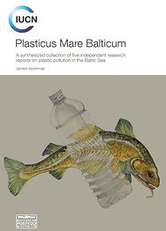 Baltic Sea and Plastic.JPG