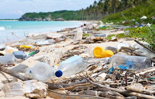 Littered Beach 1.JPG