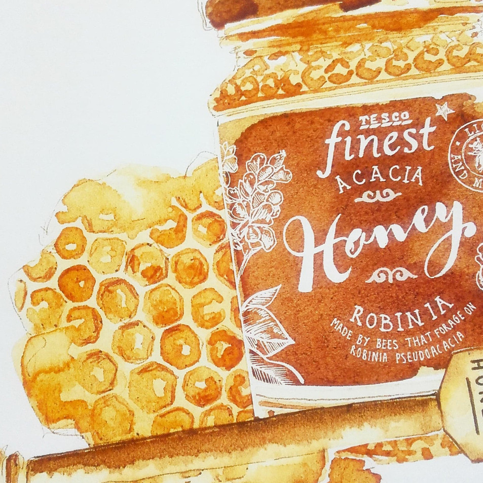 Sepia Food Illustration