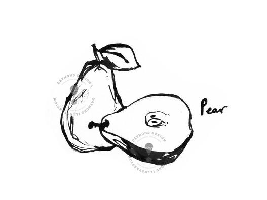 pear fruit B&W brush ink food illustration by Jenny Daymond Design and illustration