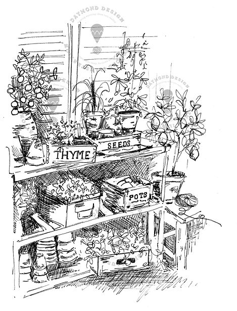 garden shed plant pots line drawing in B&W fine liner pen and ink, home andlifestyle illustraton, gardens illustration, Jenny Daymon Design and Illustration
