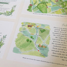 Illustrated Map & Wedding Invites