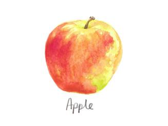 Watercolour Fruits