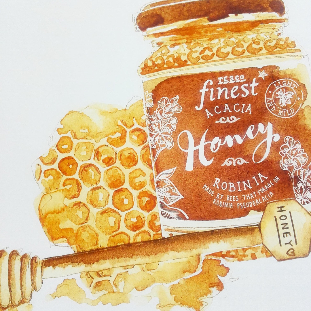 Honey Sepia food illustration painted in Coffee, food editorial, packaging design, Jenny Daymond Design and illustration