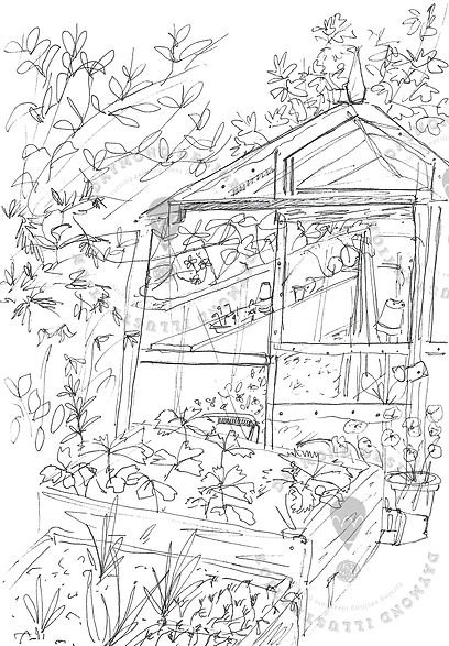 overgrown greenhouse and garden, plants and garden illustration for lifestyle publishing, plant pots illustration, Jenny Daymond Design and illustration