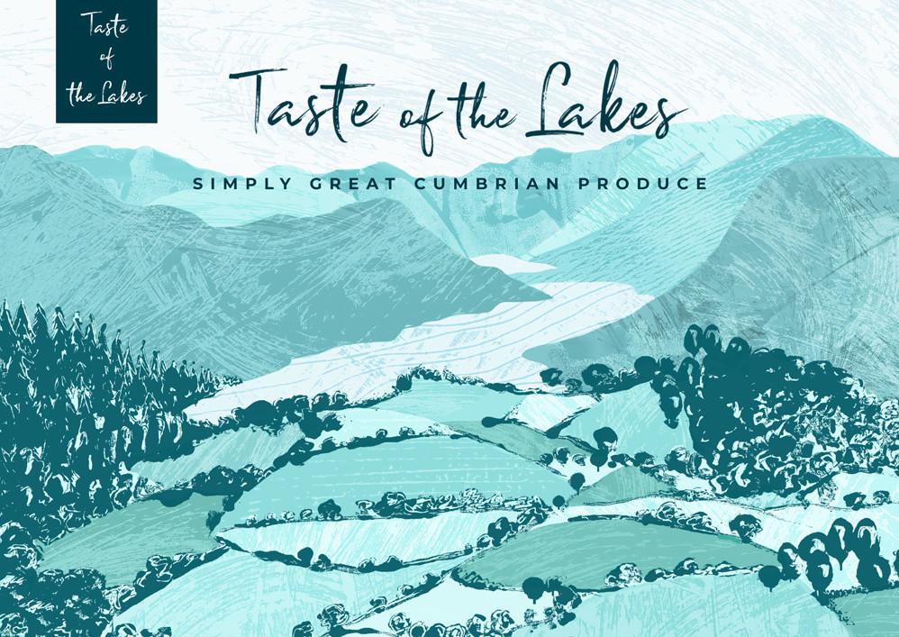 Taste of the Lakes Illustrated Branding & Web Banner