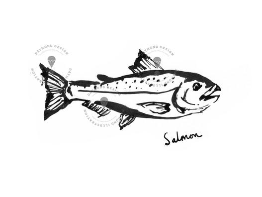 salmon fish brush ink food illustration of seafood by Jenny Daymond Design and illustration