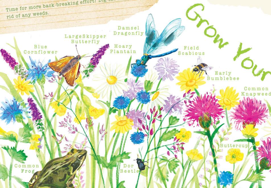 'Give Nature a Home' Book Idea