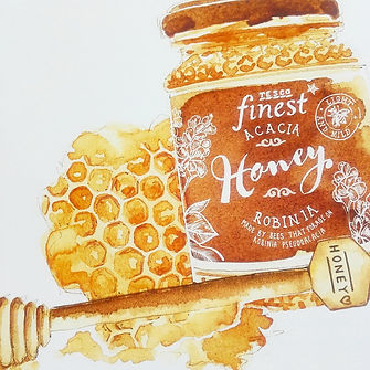 honey jar illustration, jar illutration, jam jar illustration, sepia watecolour style illustration of glass bottles, bottles on shelves illustration, sepia food illustraton, watecolour andink food illustraton, food editorial, food produce illustration, jenny Daymond Design and illustration 2