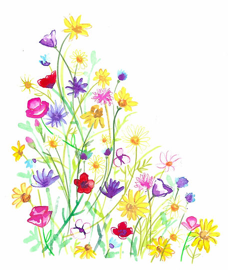 wildflower meadow watercolour loose illustration for homewre and giftware, watercolour flowers illustration, Jenny Daymond Design and illustration
