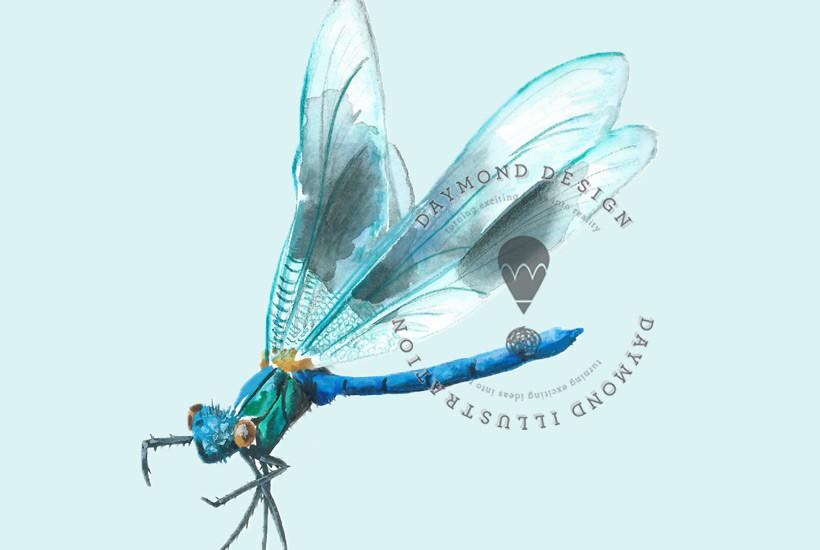 damsel dragonfly, watercolour illustration, copyright Jenny Daymond Design and illustration
