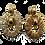 Thumbnail: YSL Earrings