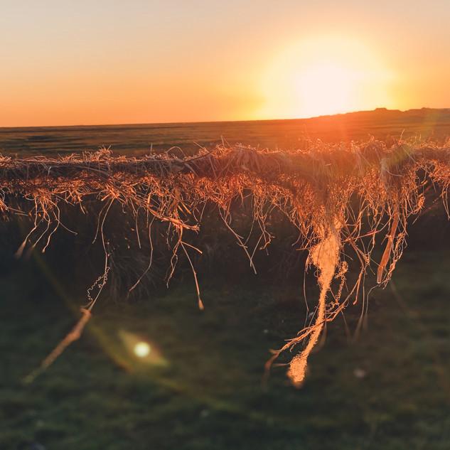 Sunset Cockerham Marshes.JPG