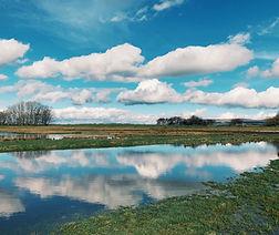 Tidal Reflection, Cockerham Marsh.JPG