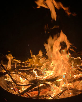 The Rewilding, Lancaster, Fire Pit, Patt