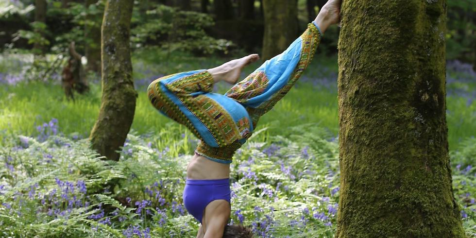 Wellness Retreat | Yoga  & Nutrition (Postponed)