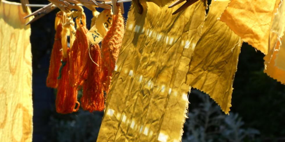 Natural Dyes & Printing: The Basics