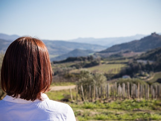 Podere le Ripi - a wine jewel in Montalcino!