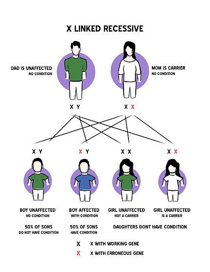 X linked Recessive figure