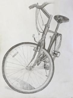 """""""Bike Study"""""""