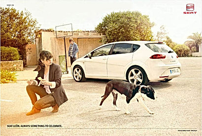 SJ_NEWS_SEATLEON_dog_001_1 copia.jpg