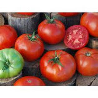 Red Peron Sprayless Tomato