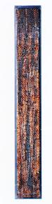 Bluttransfusion, 1995, 90x12,5cm