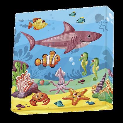 Dotz Box DOTZ in the Ocean