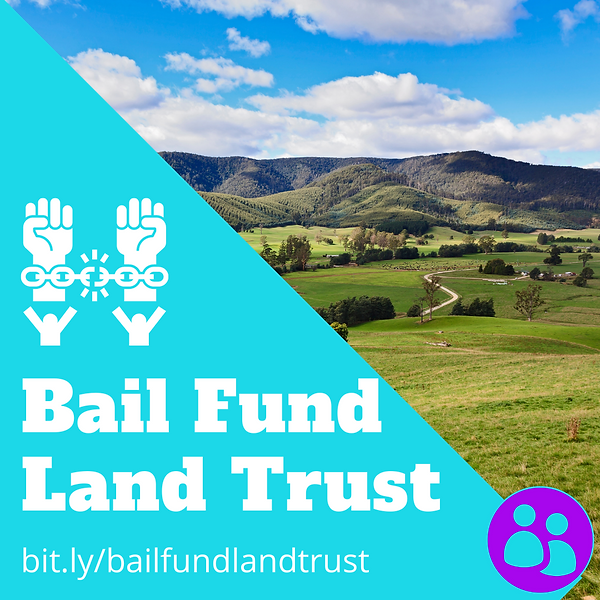 Bail Out Land Trust Flyer (2).png