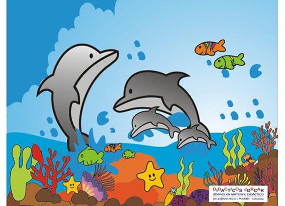 Rompecabezas familia delfín