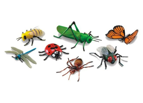 Insectos grandes