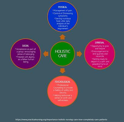 holistic care diagram.JPG