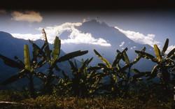 Borneo, a mystical place
