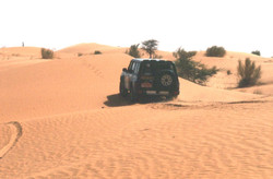 Our Nissan powers through the sand
