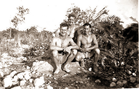 Gunn, Wilkes and Perry on Timor